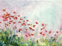 Poppies (40 x 30)